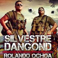 Silvestre Dangond - Ni Punto De Comparacion.mp3
