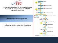 0001988_9. Glicólise e Gliconeogênese.pdf