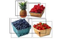 fruit frig magnets.pdf